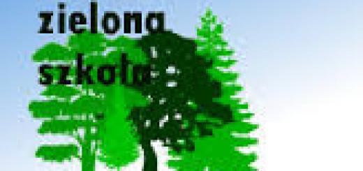 zielona 2